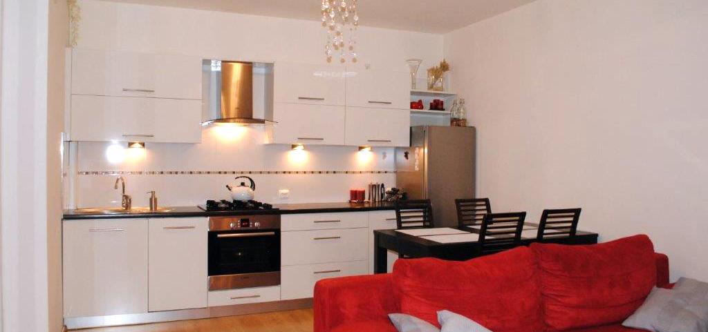 widok na salon i aneks kuchenny apartamentu na sprzedaż