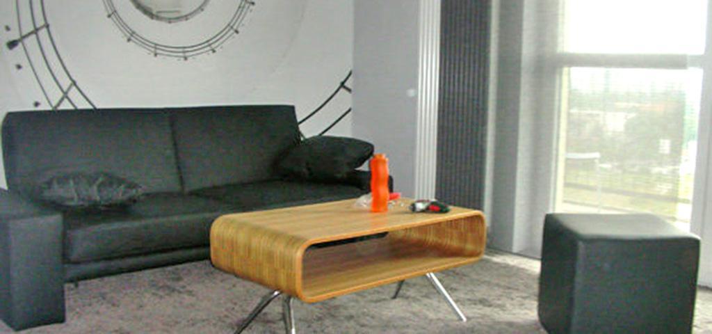 zdjęcie przedstawia ekskluzywny apartament w Katowicach na wynajem, widok na duży pokój