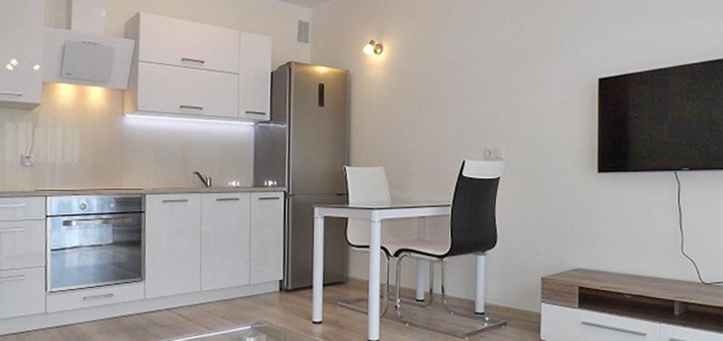 zdjęcie przedstawia salon oraz aneks kuchenny w apartamencie na wynajem w Słupsku