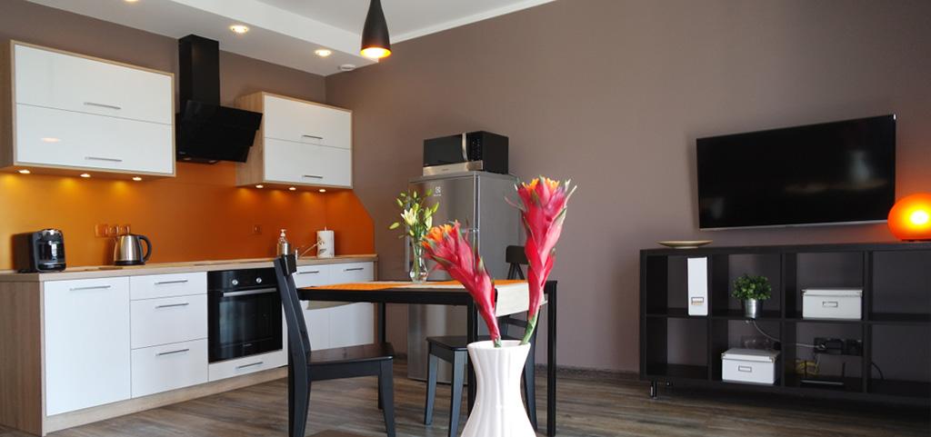 na zdjęciu apartament do wynajęcia w Katowicach, widok na salon