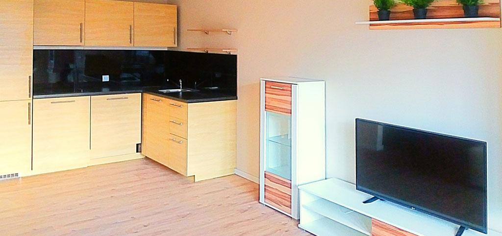 widok na wnętrze luksusowego apartamentu do wynajęcia w Katowicach