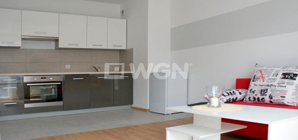 zdjęcie przedstawia salon w apartamencie na wynajem w Głogowie