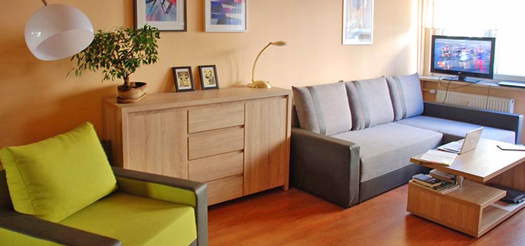 zdjęcie przedstawia salon w apartamencie do sprzedaży w Krakowie